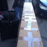 Karton auf Reise (2)