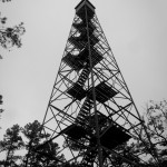 We couldn't resist climbing up the Flat Rock Fire Tower when we saw it.
