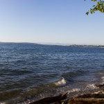 I said goodbye to Sean and then had about an hour until Junxia picked me up in Everett. Watching the waves and listening to nature made me feel at ease.